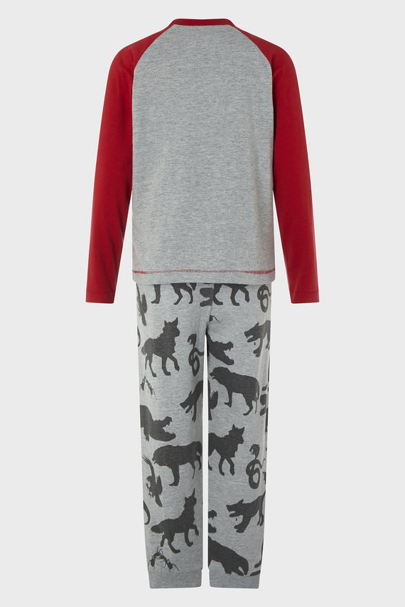 Детская серая пижама DIXON DINO (лонгслив, брюки)