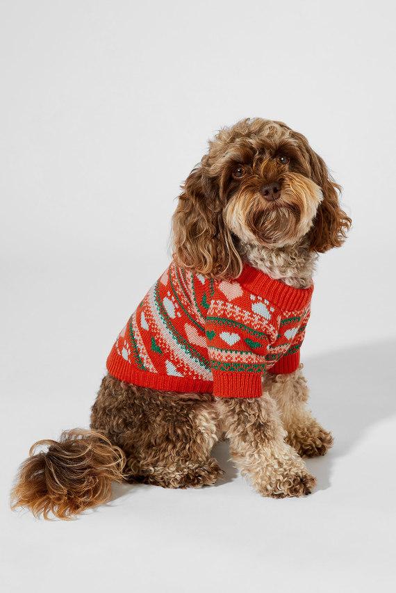 Одежда для животных Fairisle Dog Jumper